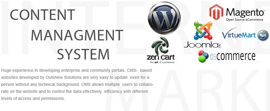 cms-web-development